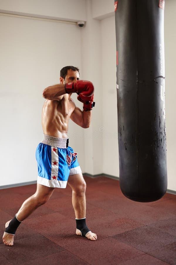 与punchbag的Kickboxer训练 免版税库存照片