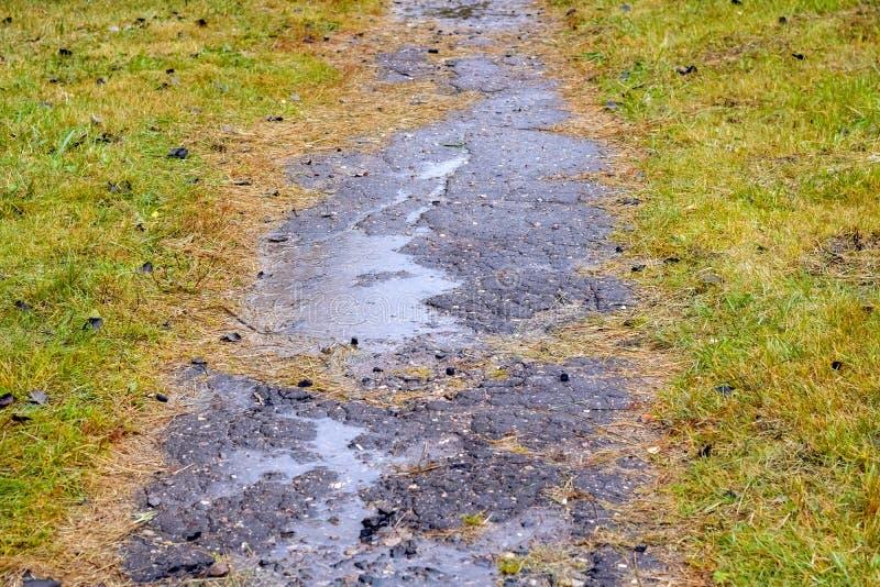 与raind生产纪录的水坑在道路 免版税库存照片