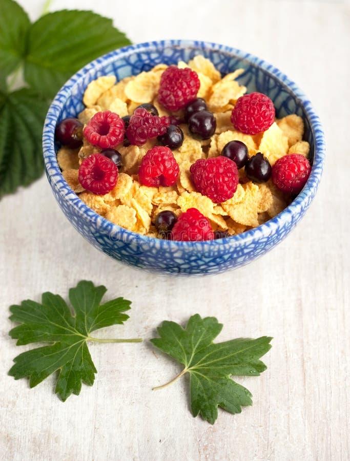 与raspberrys和无核小葡萄干的玉米片 免版税库存图片