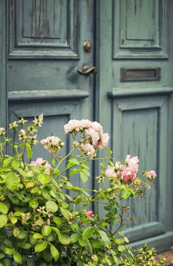与rosebush的绿色门 库存照片