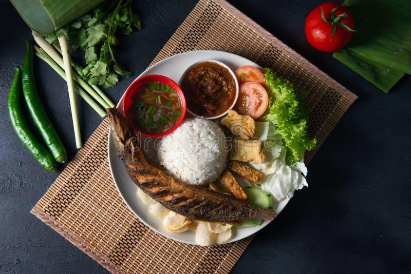与sambal的传统马来的猫鱼米 库存照片