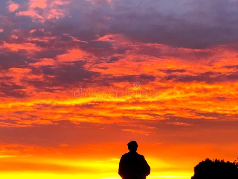 与Silhoutte的橙色和黄色日落 图库摄影