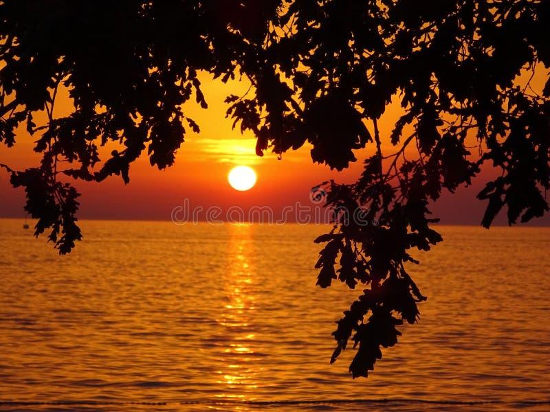 与silhoutte的美好的海洋日落 库存图片