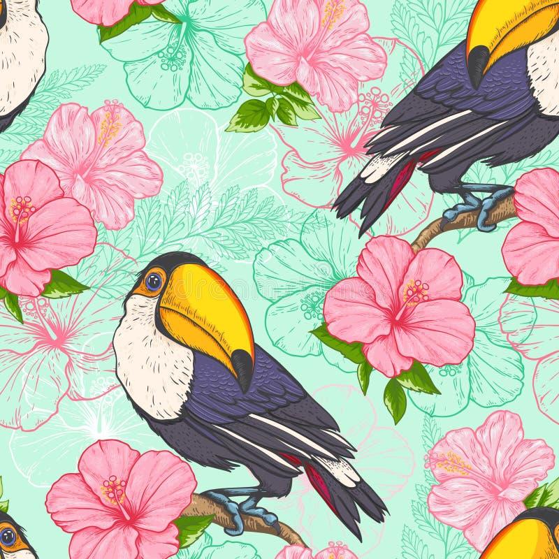 与toucan的无缝的样式 向量例证