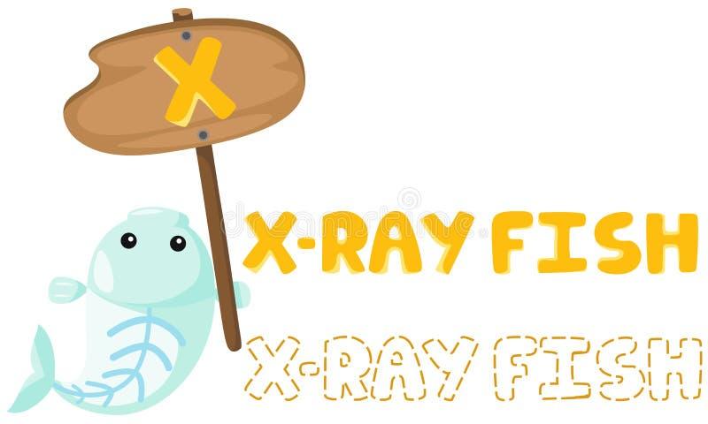 与X-射线鱼的动物字母表x 库存例证