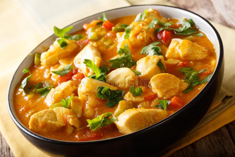 与yuca的巴西人典型的食物博博在椰树的鸡和胡椒 库存照片