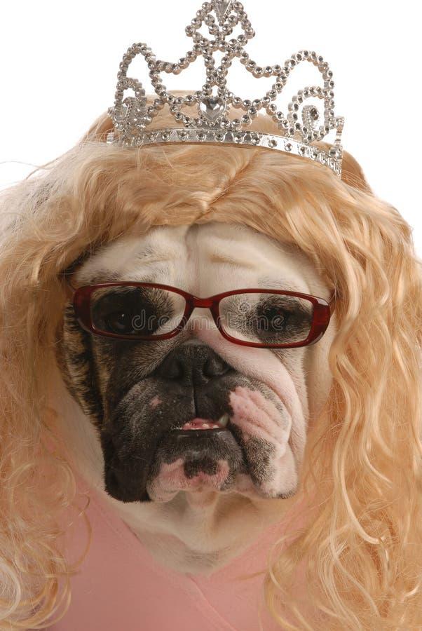 丑恶狗的女性 免版税库存图片