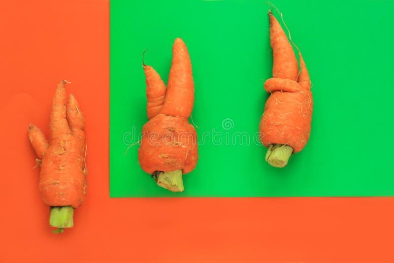 丑恶的食物 在淡色背景的被扭屈的有机红萝卜在绿色和橙色duoton 库存照片