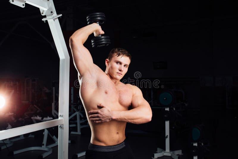 专业做锻炼的爱好健美者坚强的肌肉杨人特写镜头画象  与杠铃的锻炼在健身房 库存照片