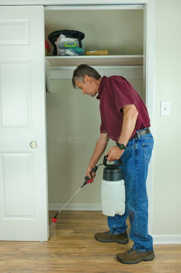 专业害虫控制家臭虫服务 库存图片