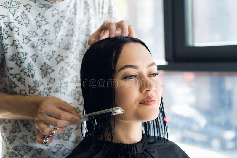 专业美发师,梳女性客户的头发的专业发廊的美发师 秀丽和haircare概念 免版税库存图片