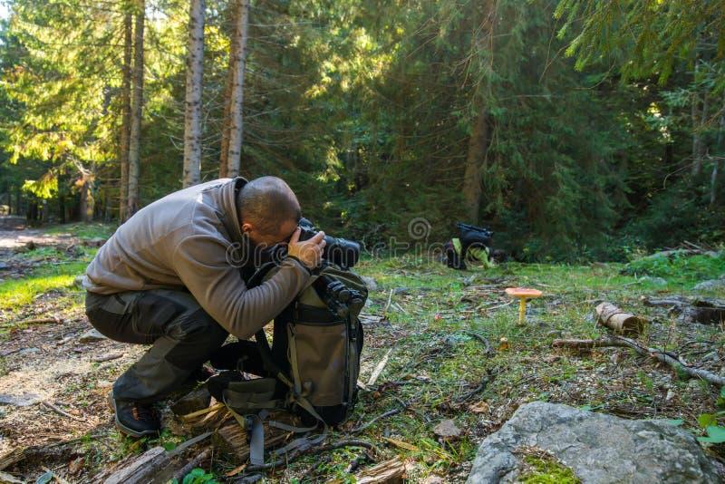 专业自然摄影师 免版税库存图片