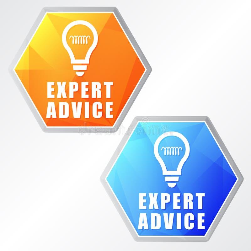 专家意见和电灯泡标志,两个颜色六角形网象 皇族释放例证