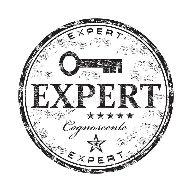 专家的难看的东西不加考虑表赞同的人 库存例证
