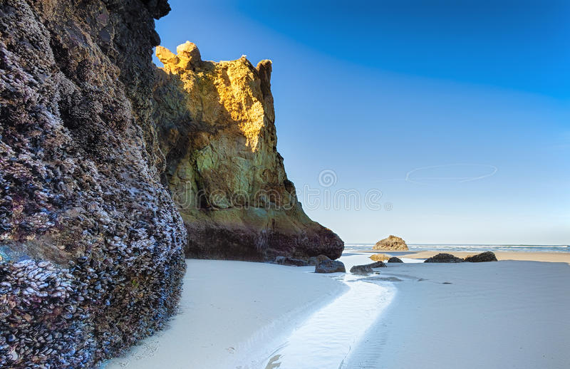 世外桃源海滩俄勒冈海岸 免版税图库摄影