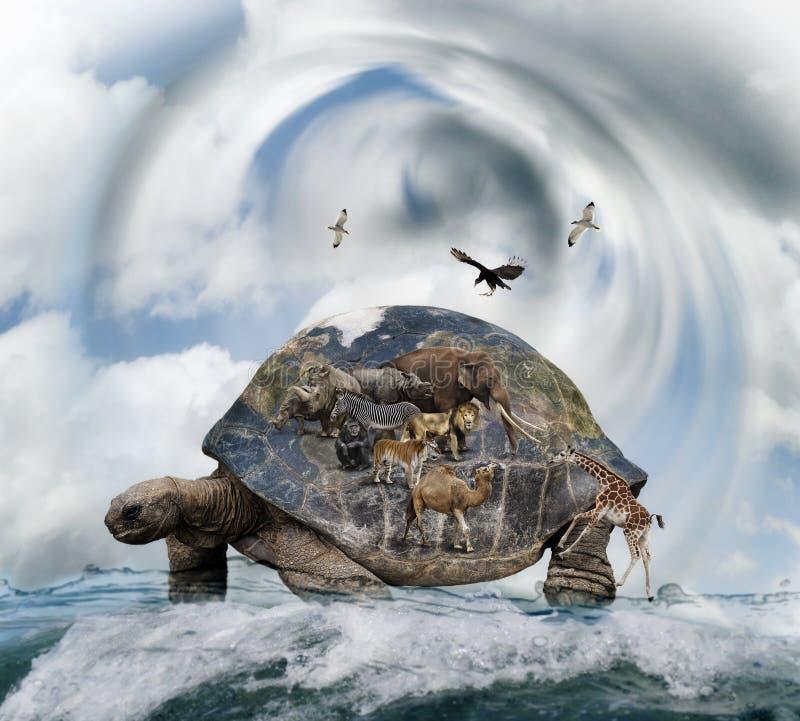 世界乌龟概念 库存图片