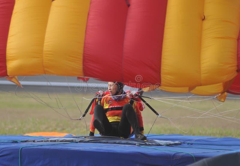 世界军事跳伞的冠军 库存图片