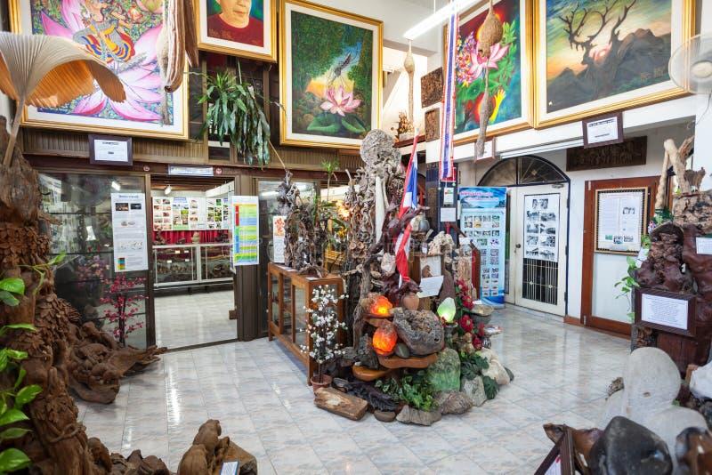 世界昆虫博物馆 免版税库存照片