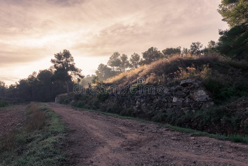 世界环境日概念:山早晨日出背景的国家领域 在montain的有雾的日出天 库存图片