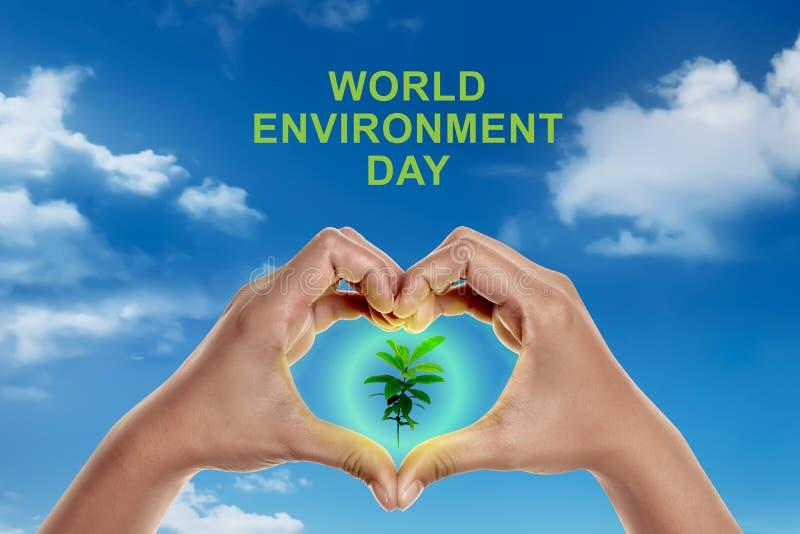 世界环境日概念 库存图片