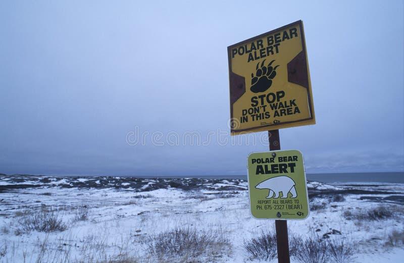 丘吉尔北极熊信息标志加拿大海滩  免版税库存照片