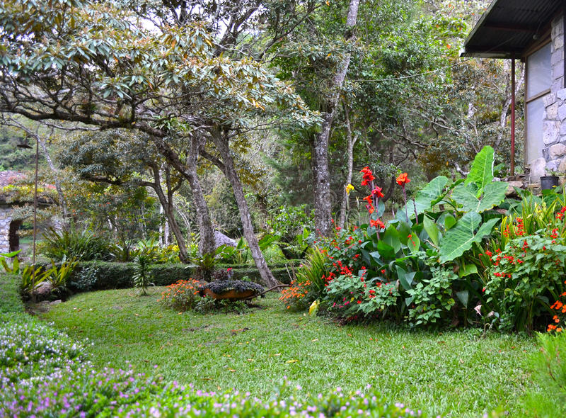 丛林地带的内格拉(Ecolodge),马塔加尔帕,尼加拉瓜庭院 免版税库存图片