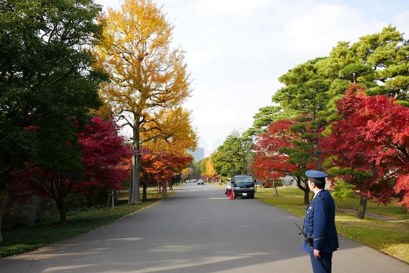东京故宫庭院  免版税库存照片