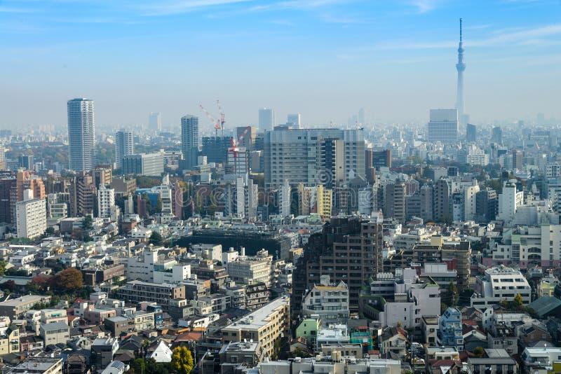 晒 東京 和