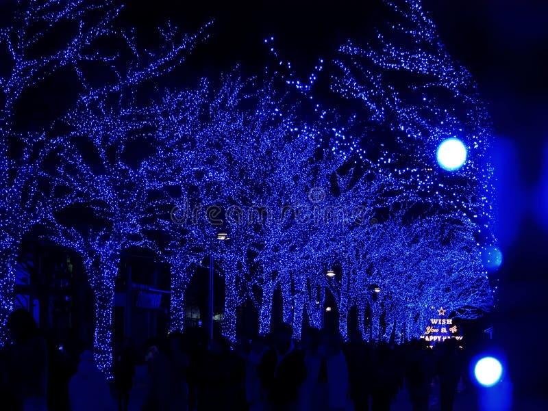 东京,日本- 2017年12月28日:涩谷蓝色隧道或Ao没有Dokutsu照明在涩谷公园街道上举行 库存图片