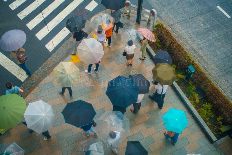 东京,日本2017年6月28日- :未认出的人鸟瞰图在斑马线街道上的伞下在Jimbocho 库存图片