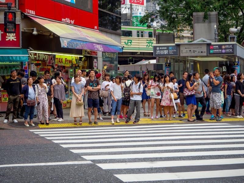 东京,日本2017年6月-28 :等绿灯的未认出的人民穿过街道通过在的斑马 免版税库存照片