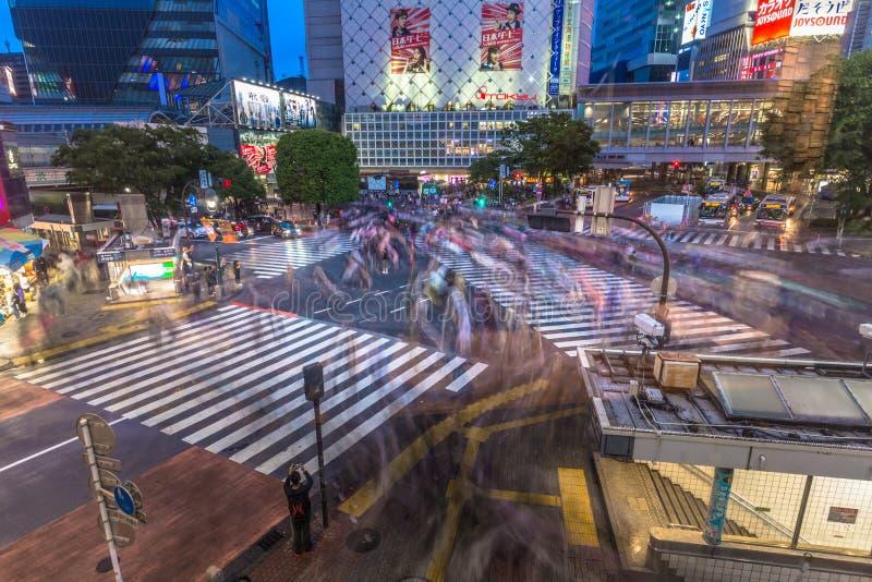 东京- 2019年5月21日:日本东京涩谷区的抢渡 免版税库存照片