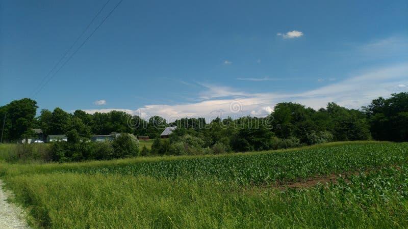东南天空的白色云堤 库存照片