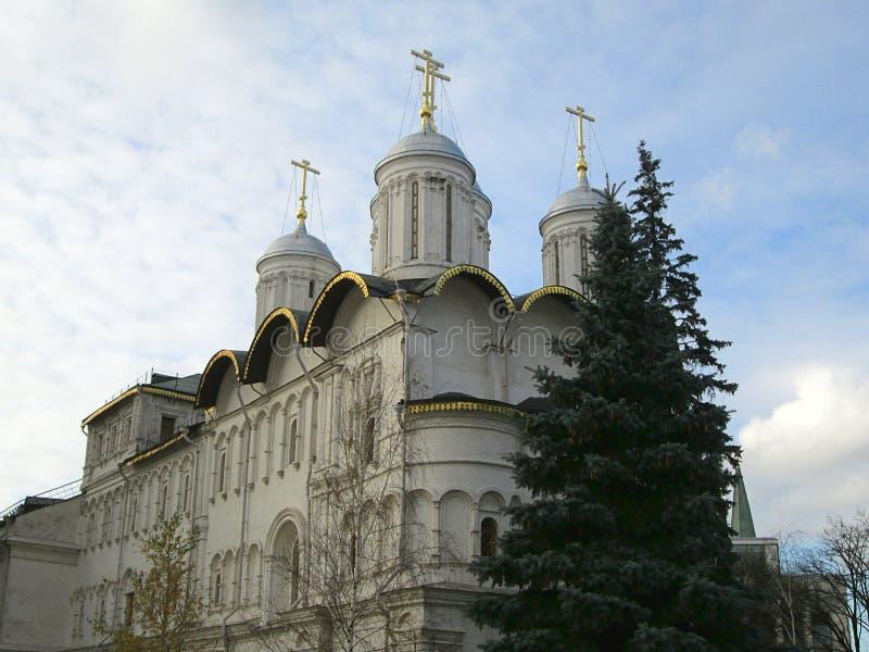 东正教圆顶在克里姆林宫复合体里面的在俄罗斯 免版税库存照片