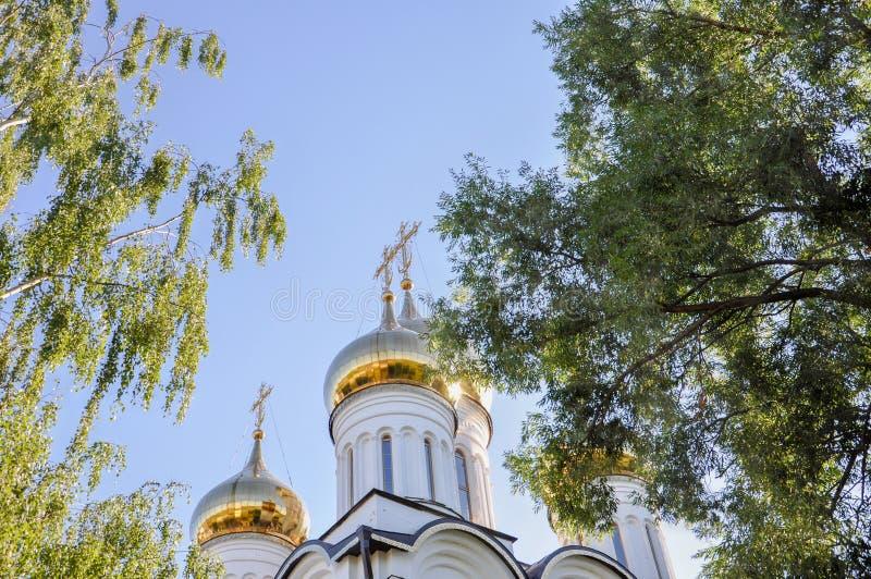 东正教的金黄圆顶反对蓝天和绿色树的 库存照片