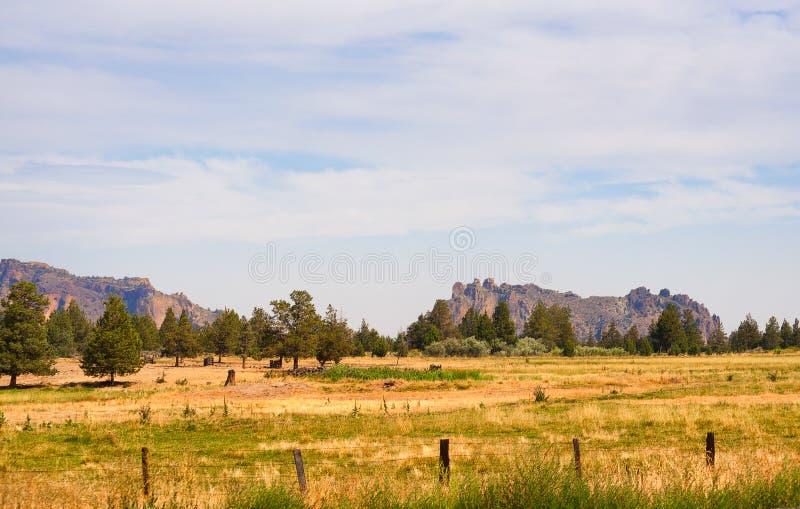 东部俄勒冈高沙漠风景 免版税库存照片