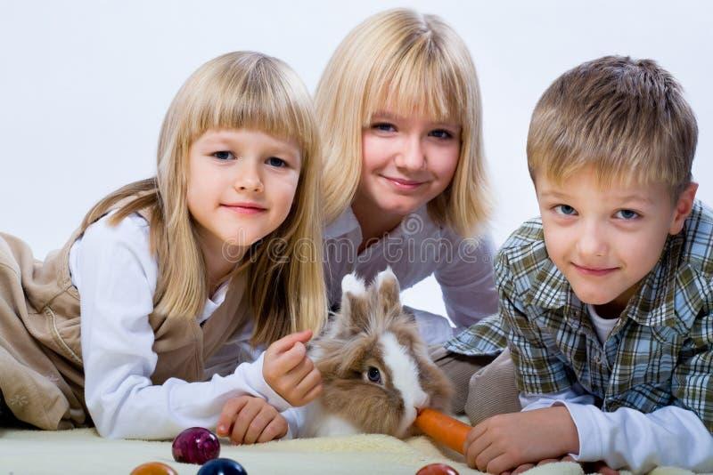 东部兔子 免版税库存图片