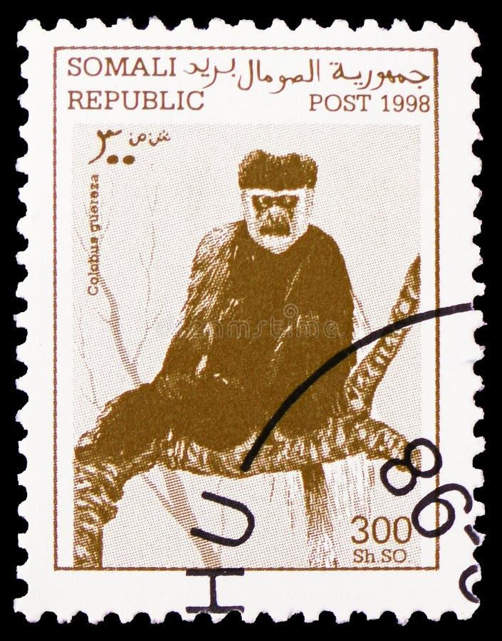 东部黑白疣猴疣猴guereza,哺乳动物serie,大约1998年 免版税库存照片