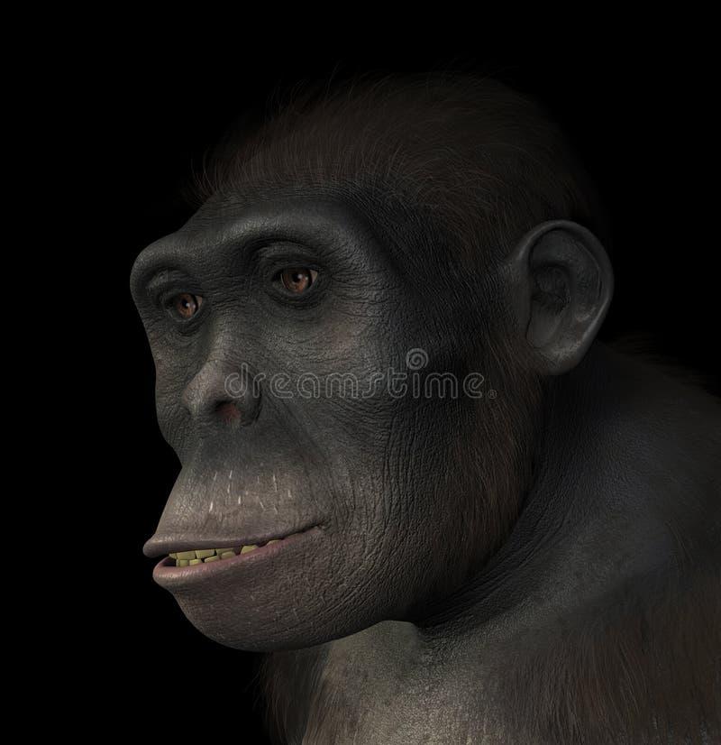 东非猿人画象 皇族释放例证