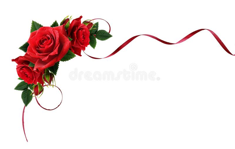 丝绸丝带和红色玫瑰开花与水滴在角落a 免版税库存图片