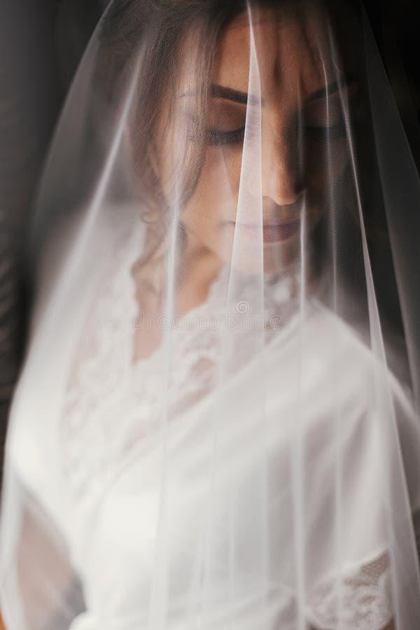 丝绸长袍的华美的美丽的新娘在摆在windo的面纱下 免版税库存图片