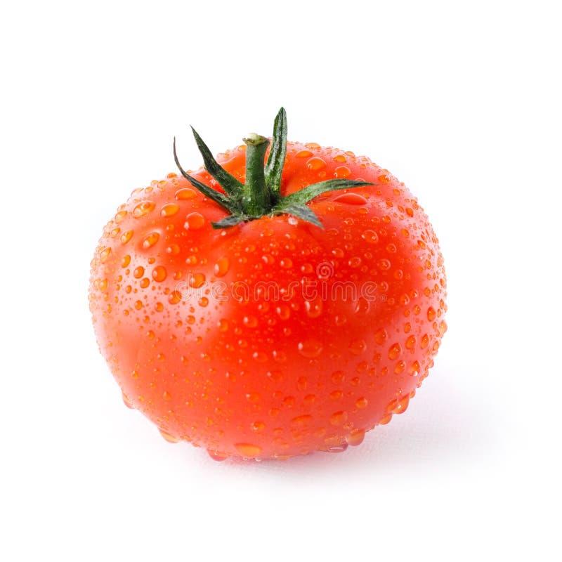丢弃红色蕃茄水 库存图片
