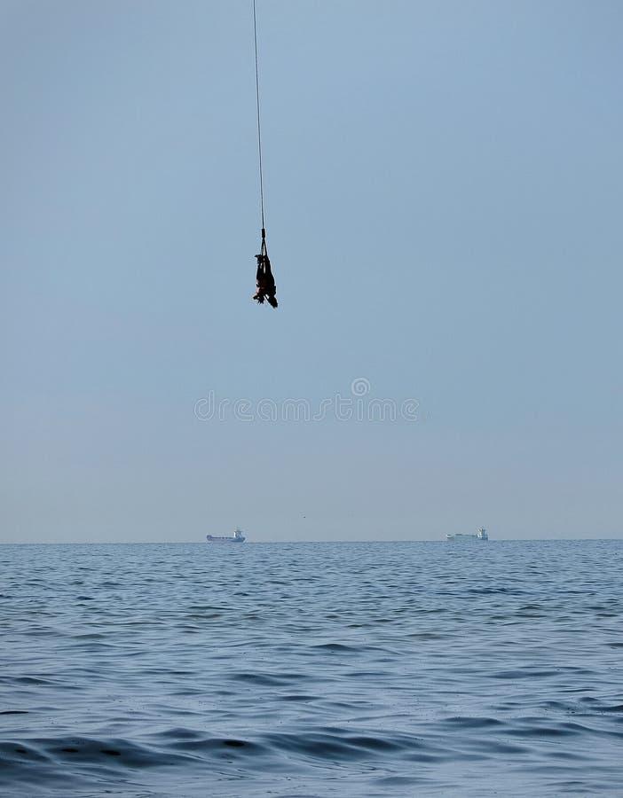 两一起跳跃在海上的人纵排橡皮筋 库存照片
