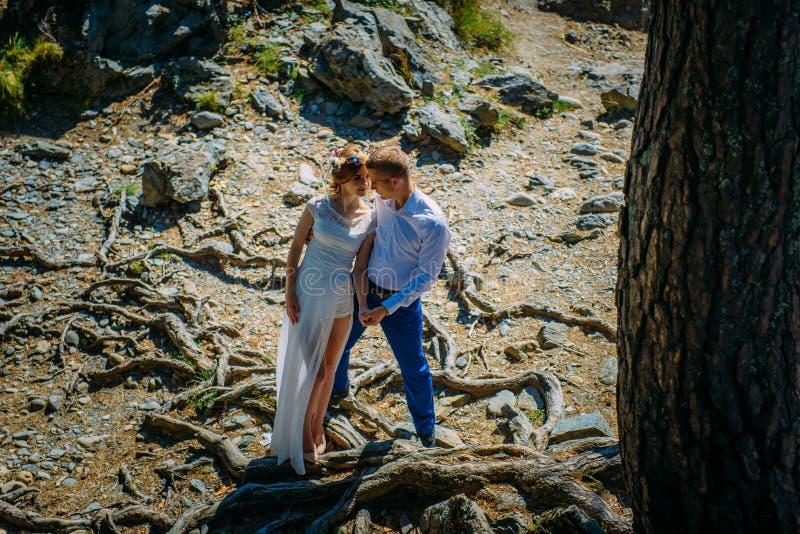 两三个新婚佳偶在狂放的自然和注视站立在彼此 在背景、一棵大树和巨大的木根中 库存照片