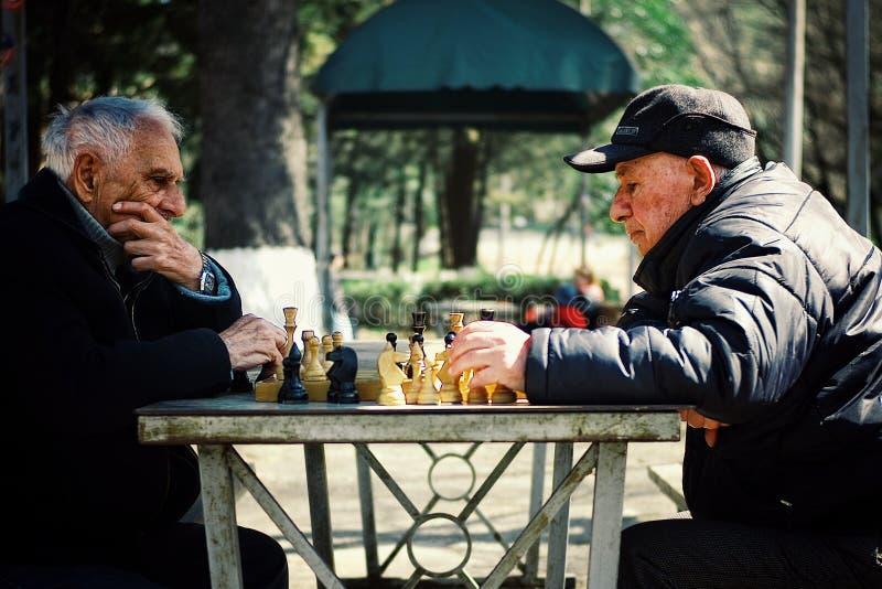 两下棋的资深年长人在一个公园 库存照片
