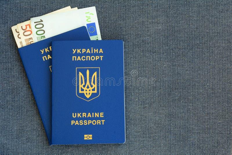 两与钞票的新的乌克兰生物统计的护照欧洲在灰色布料人字形背景 库存图片