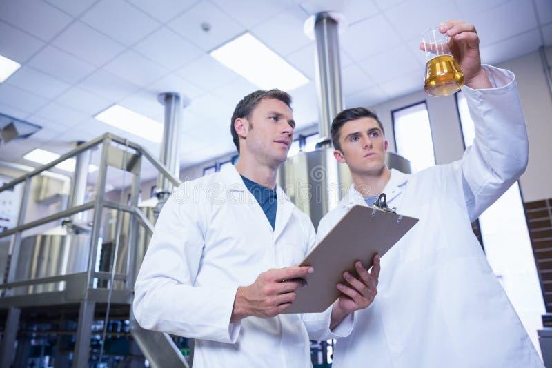 两个人在实验室用啤酒涂看烧杯 免版税库存图片