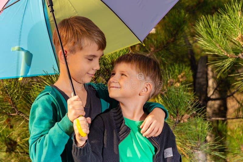 两个兄弟在容忍站立在一把明亮的多彩多姿的伞下并且看彼此在杉木森林里 库存照片