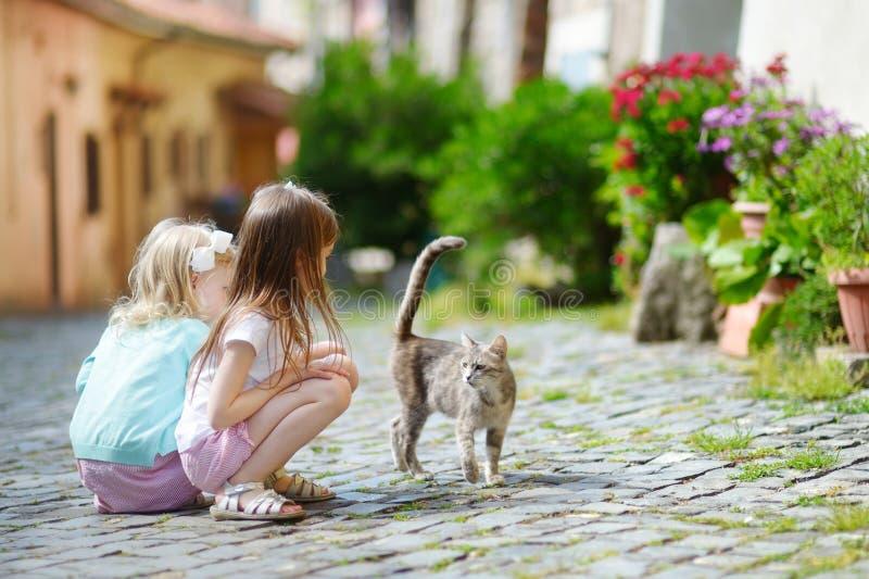 两个可爱的妹和猫 库存照片