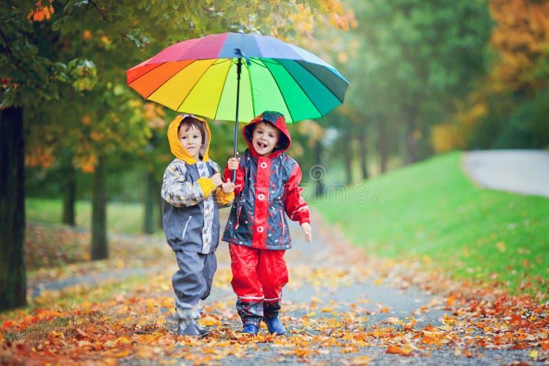 两个可爱的孩子,男孩兄弟,使用在有umbrel的公园 库存图片